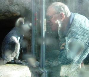 penguin talk 10-05